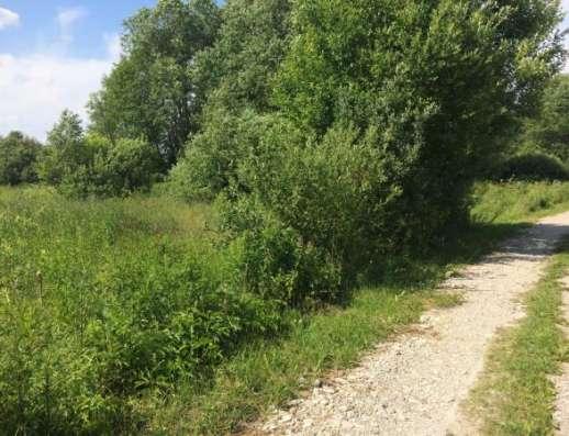 Продается земельный участок 7,1 сотка в СНТ Надежда (рядом с дер. Новый путь), Можайский р-он,95 км от МКАД по Минскому, Можайскому шоссе.
