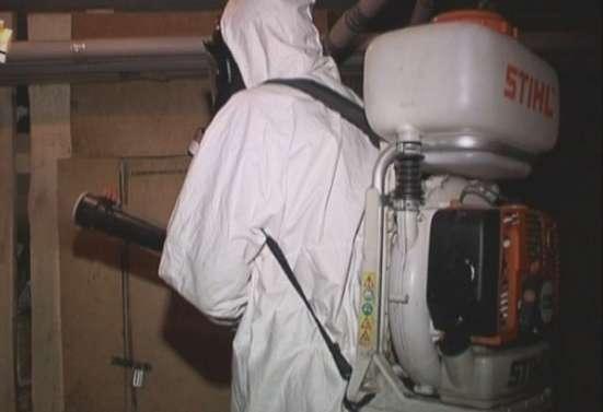 Уничтожение клещей комаров ос и клопов СЭС в Зарайске
