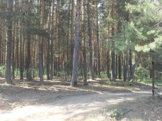 Участок в дер. Носово Калязинского района Тверской области