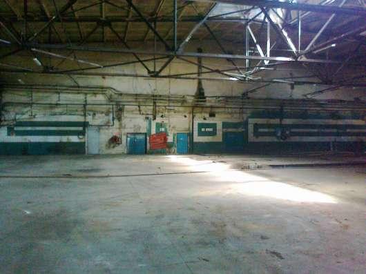 Сдам помещение под склад, производство, 1600 кв.м,м.Черная р в Санкт-Петербурге Фото 4