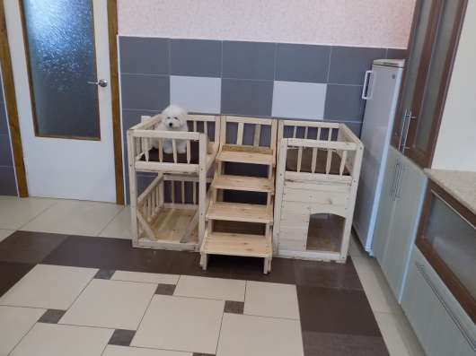 Кровать для нескольких собак в г. Минск Фото 2