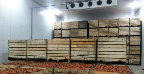 Овощехранилище под ключ в Крыму. Хорошие цены. Сервис в г. Симферополь Фото 5