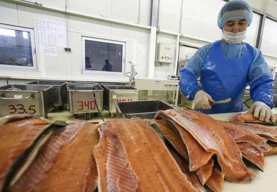 Производство, переработка рыбы и морепродуктов в Москве Фото 2