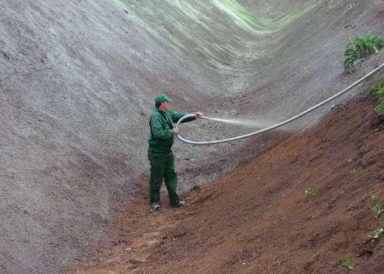 Создание газона методом гидропосева в Ростове-на-Дону Фото 2