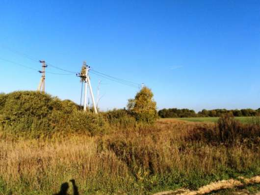 Участок 3Га, д. Ерышово, Можайский р-н. Фото 5