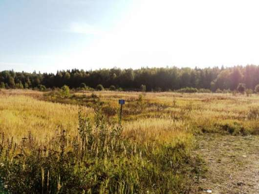Участок 14 соток с выходом в лес в ДНП «Ягодный».