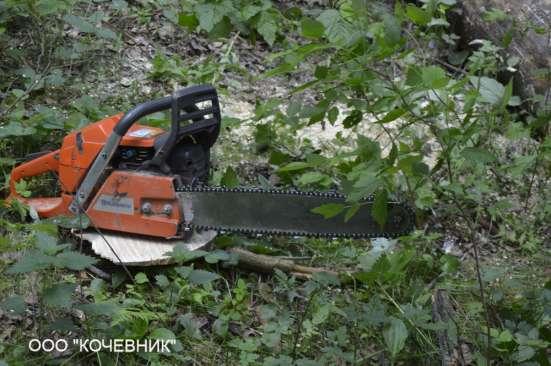 удаление опасных аварийных деревьев -кронирование