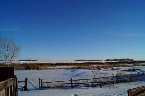 Сельскохозяйственный Бизнес в Магнитогорске Фото 2