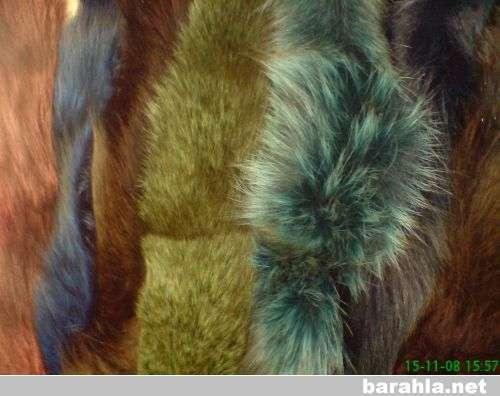 опушки из натурального меха разных цвет в Санкт-Петербурге Фото 3