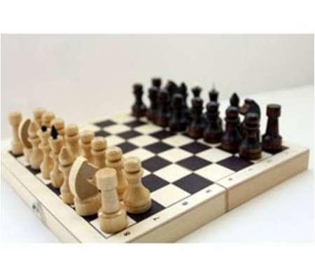 Шахматы лакированные Обиходные 290х145х38 новые с доставкой в Волгограде Фото 5