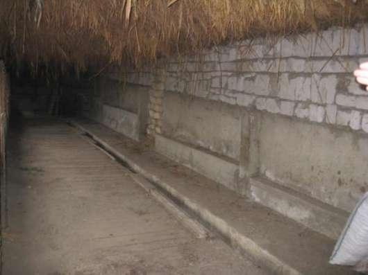 Обмен 2х домов с мини коровником на квартиру в Одессе