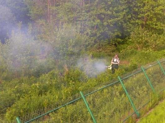 Уничтожение клещей кротов шершнней клопов и тараканов в Волоколамске в Москве Фото 1